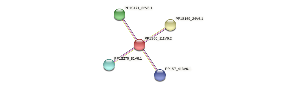PP1S60_111V6.2 protein (Physcomitrella patens) - STRING interaction network