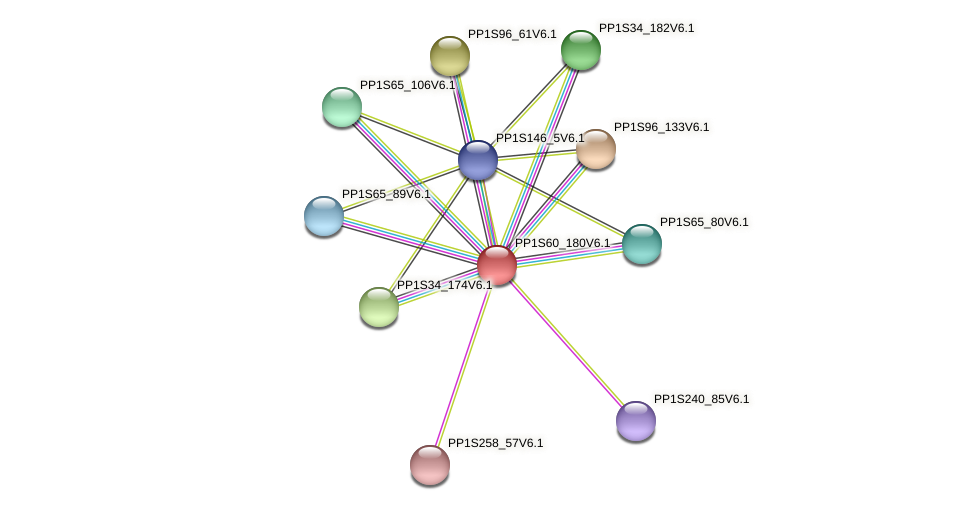 PP1S60_180V6.1 protein (Physcomitrella patens) - STRING interaction network