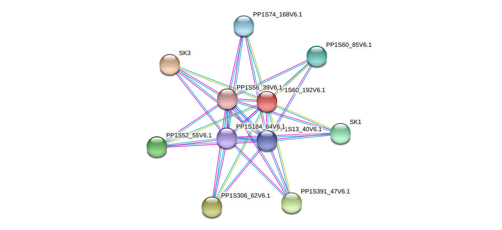 PP1S60_192V6.1 protein (Physcomitrella patens) - STRING interaction network