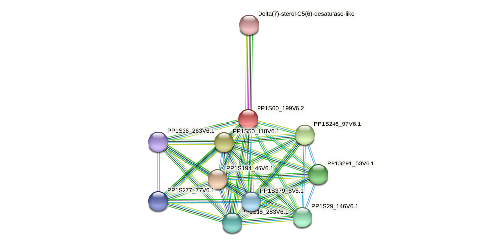 PP1S60_199V6.2 protein (Physcomitrella patens) - STRING interaction network