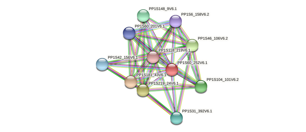 PP1S60_252V6.1 protein (Physcomitrella patens) - STRING interaction network