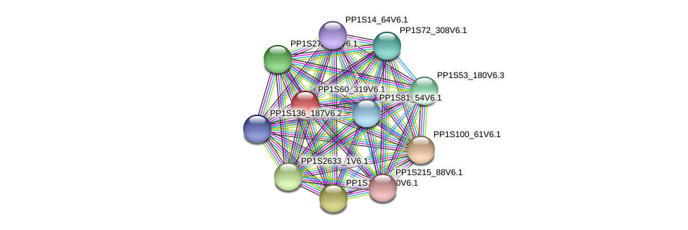 PP1S60_319V6.1 protein (Physcomitrella patens) - STRING interaction network