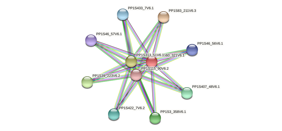 PP1S60_321V6.1 protein (Physcomitrella patens) - STRING interaction network