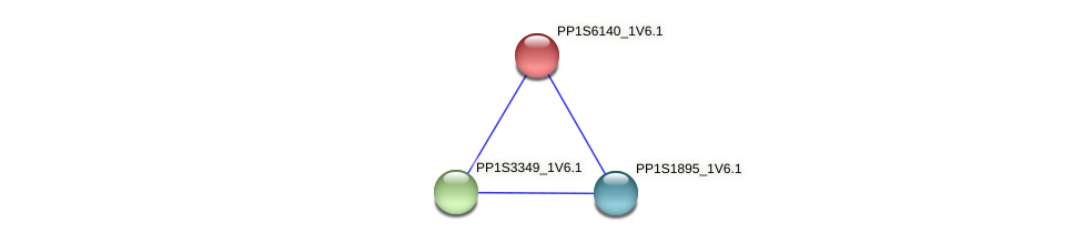 PP1S6140_1V6.1 protein (Physcomitrella patens) - STRING interaction network