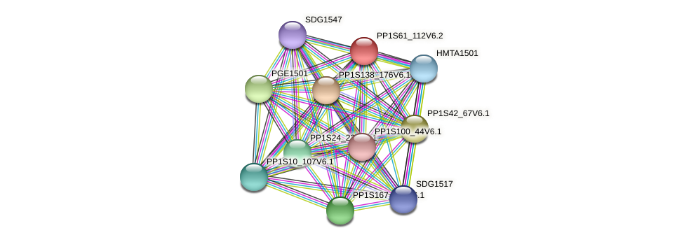 PP1S61_112V6.1 protein (Physcomitrella patens) - STRING interaction network