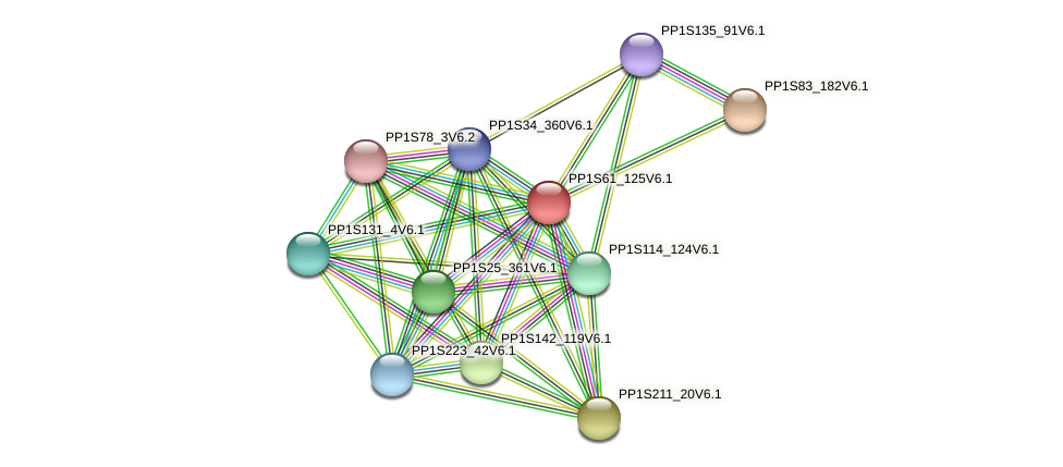 PP1S61_125V6.1 protein (Physcomitrella patens) - STRING interaction network