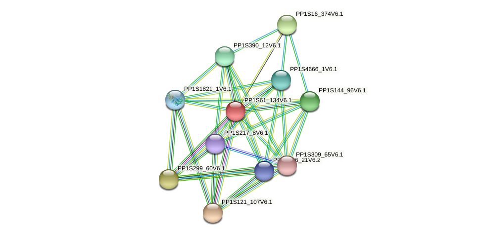 PP1S61_134V6.1 protein (Physcomitrella patens) - STRING interaction network