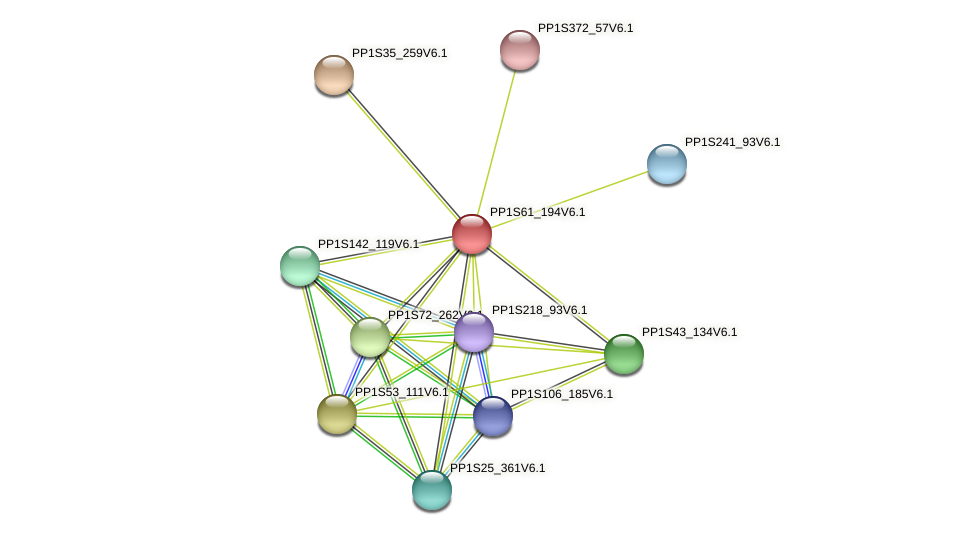 PP1S61_194V6.1 protein (Physcomitrella patens) - STRING interaction network