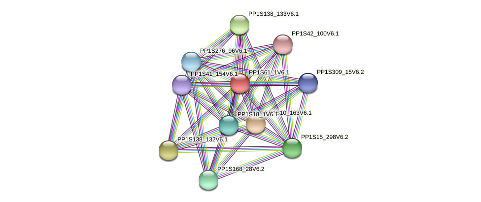 PP1S61_1V6.1 protein (Physcomitrella patens) - STRING interaction network