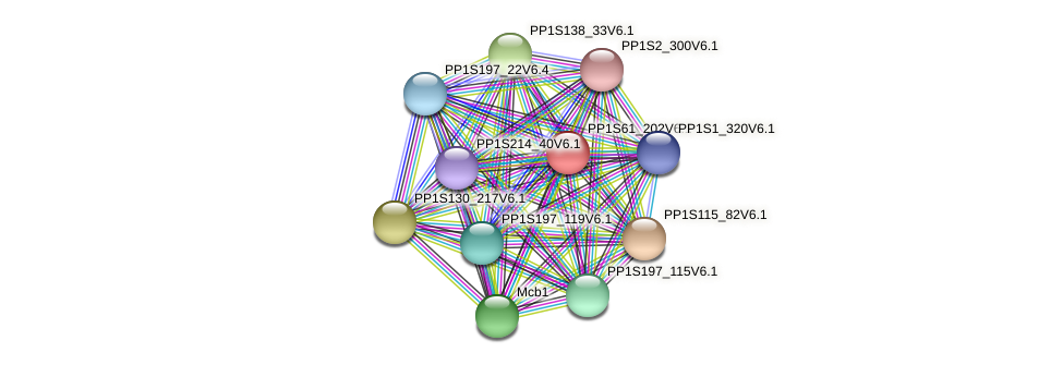PP1S61_202V6.1 protein (Physcomitrella patens) - STRING interaction network