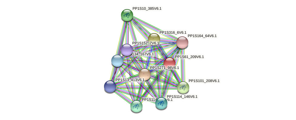 PP1S61_209V6.1 protein (Physcomitrella patens) - STRING interaction network