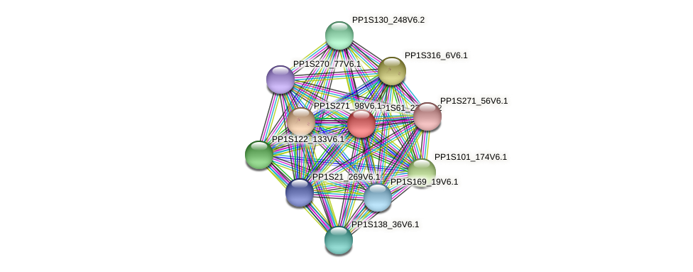 PP1S61_236V6.1 protein (Physcomitrella patens) - STRING interaction network