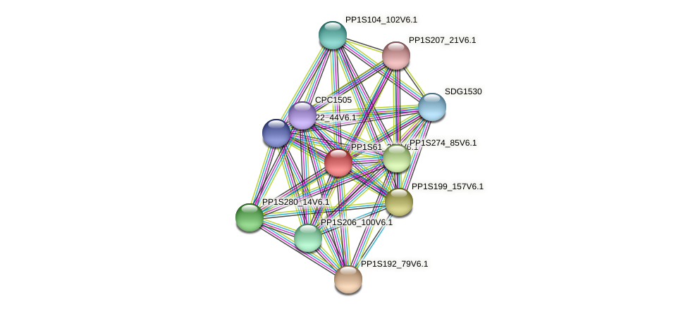 PP1S61_278V6.1 protein (Physcomitrella patens) - STRING interaction network