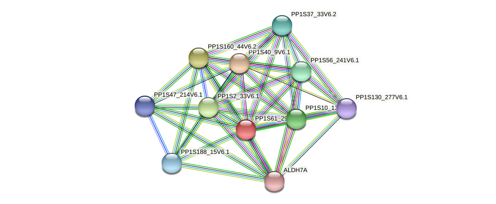 PP1S61_296V6.1 protein (Physcomitrella patens) - STRING interaction network
