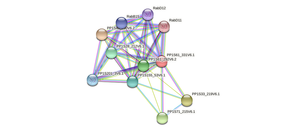 PP1S61_331V6.1 protein (Physcomitrella patens) - STRING interaction network