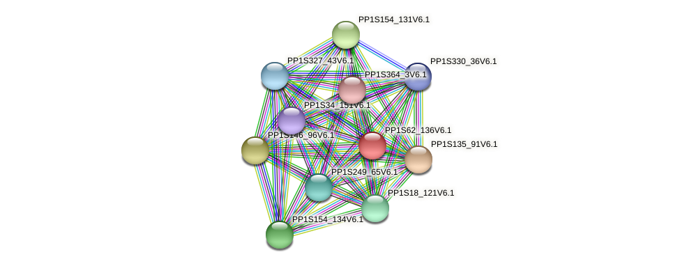 PP1S62_136V6.1 protein (Physcomitrella patens) - STRING interaction network