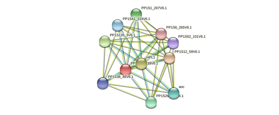 PP1S62_139V6.1 protein (Physcomitrella patens) - STRING interaction network
