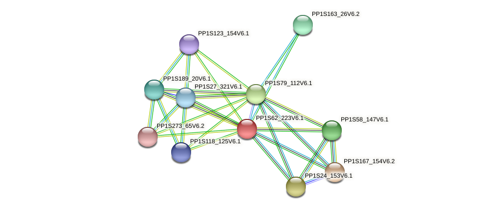PP1S62_223V6.1 protein (Physcomitrella patens) - STRING interaction network