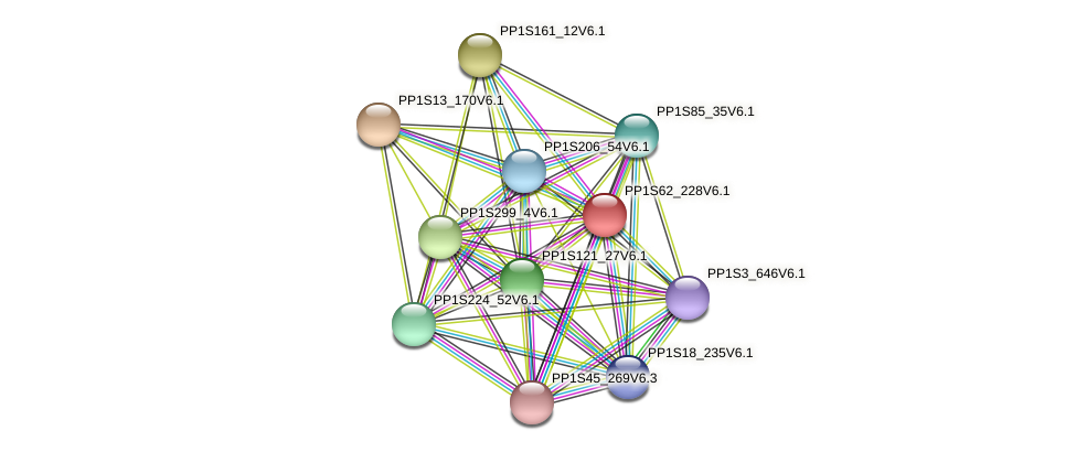 PP1S62_228V6.1 protein (Physcomitrella patens) - STRING interaction network