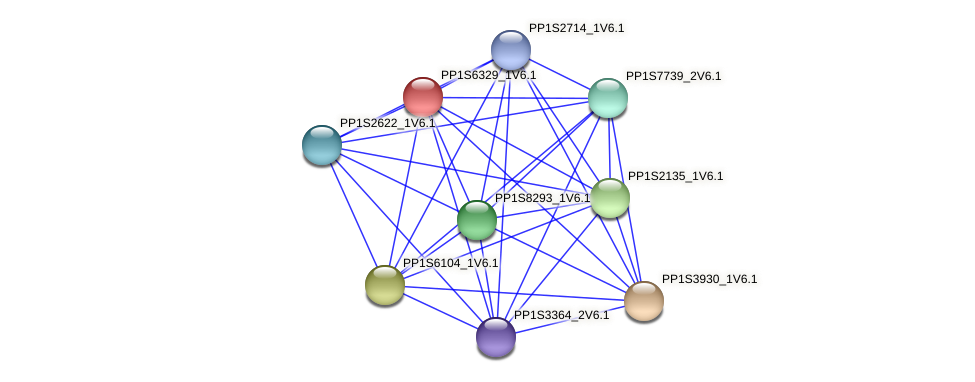PP1S6329_1V6.1 protein (Physcomitrella patens) - STRING interaction network