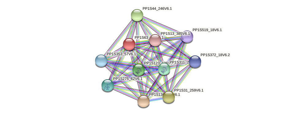 PP1S63_110V6.1 protein (Physcomitrella patens) - STRING interaction network