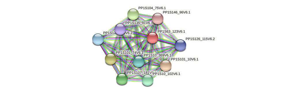 PP1S63_123V6.1 protein (Physcomitrella patens) - STRING interaction network