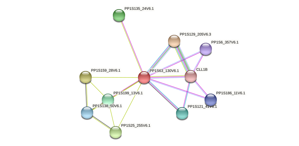 PP1S63_130V6.1 protein (Physcomitrella patens) - STRING interaction network