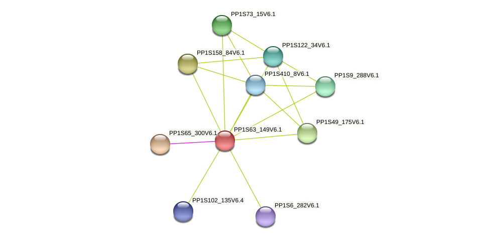 PP1S63_149V6.1 protein (Physcomitrella patens) - STRING interaction network