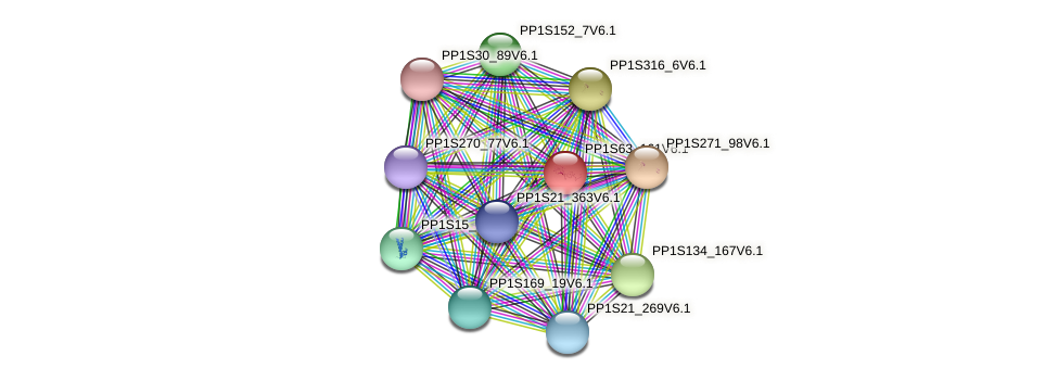 PP1S63_161V6.1 protein (Physcomitrella patens) - STRING interaction network