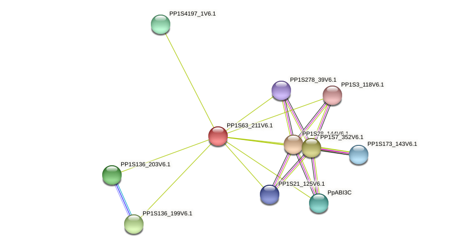 PP1S63_211V6.1 protein (Physcomitrella patens) - STRING interaction network