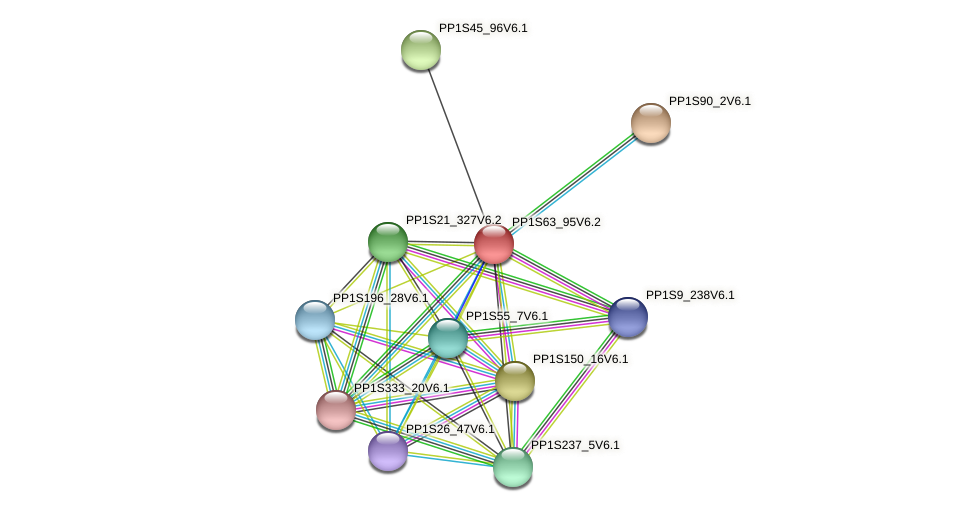 PP1S63_95V6.2 protein (Physcomitrella patens) - STRING interaction network