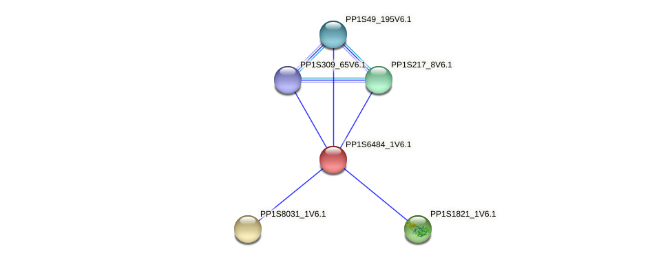 PP1S6484_1V6.1 protein (Physcomitrella patens) - STRING interaction network