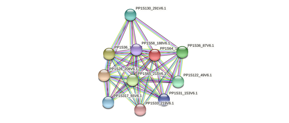 PP1S64_105V6.1 protein (Physcomitrella patens) - STRING interaction network
