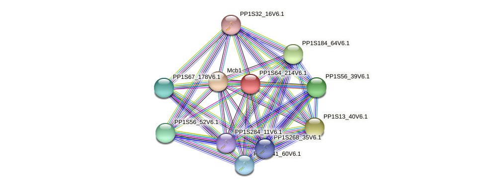 PP1S64_214V6.1 protein (Physcomitrella patens) - STRING interaction network