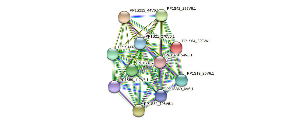 PP1S64_220V6.1 protein (Physcomitrella patens) - STRING interaction network