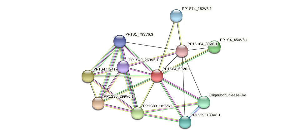 PP1S64_69V6.1 protein (Physcomitrella patens) - STRING interaction network