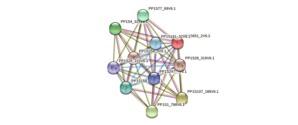 PP1S651_2V6.2 protein (Physcomitrella patens) - STRING interaction network