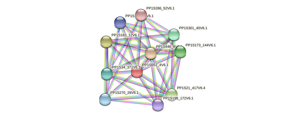 PP1S651_4V6.1 protein (Physcomitrella patens) - STRING interaction network