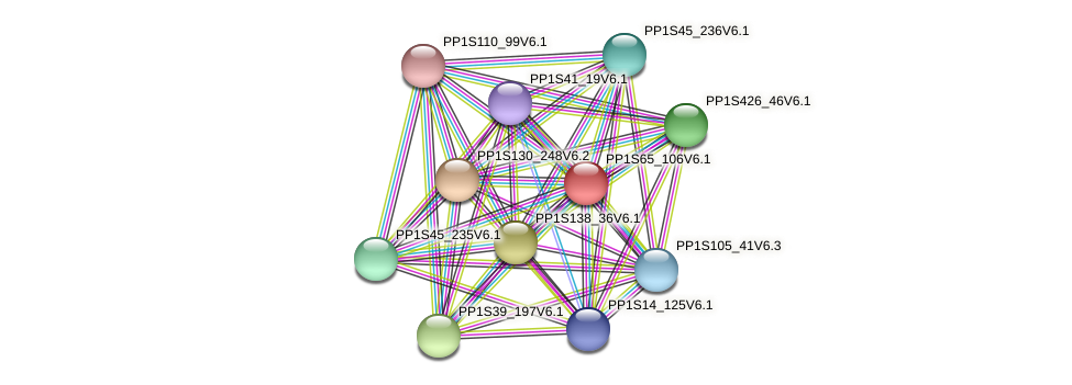 PP1S65_106V6.1 protein (Physcomitrella patens) - STRING interaction network