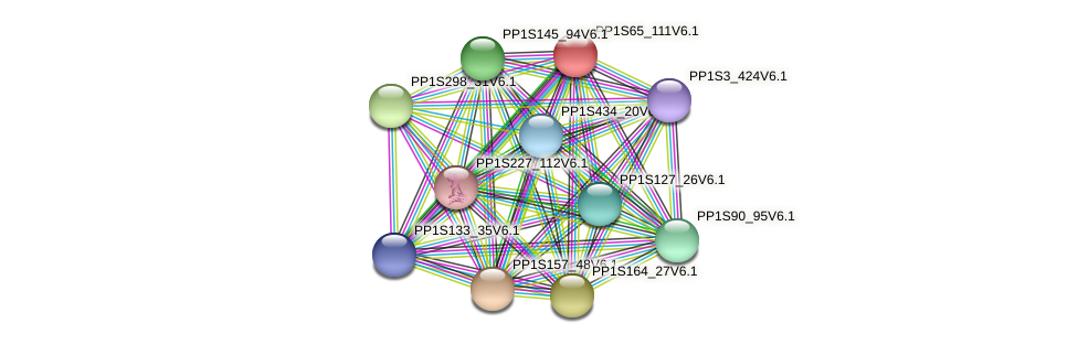 PP1S65_111V6.1 protein (Physcomitrella patens) - STRING interaction network