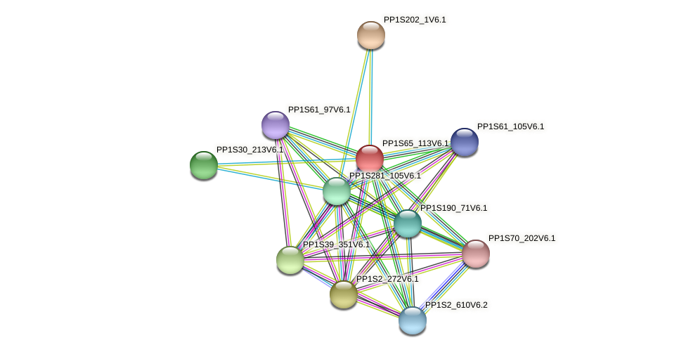 PP1S65_113V6.1 protein (Physcomitrella patens) - STRING interaction network