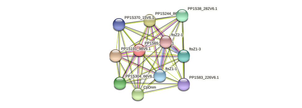 PP1S65_114V6.1 protein (Physcomitrella patens) - STRING interaction network