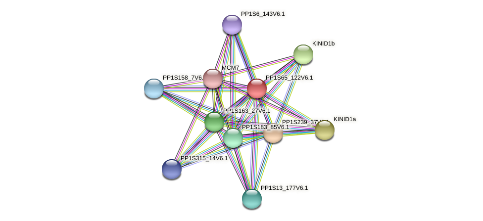 PP1S65_122V6.1 protein (Physcomitrella patens) - STRING interaction network