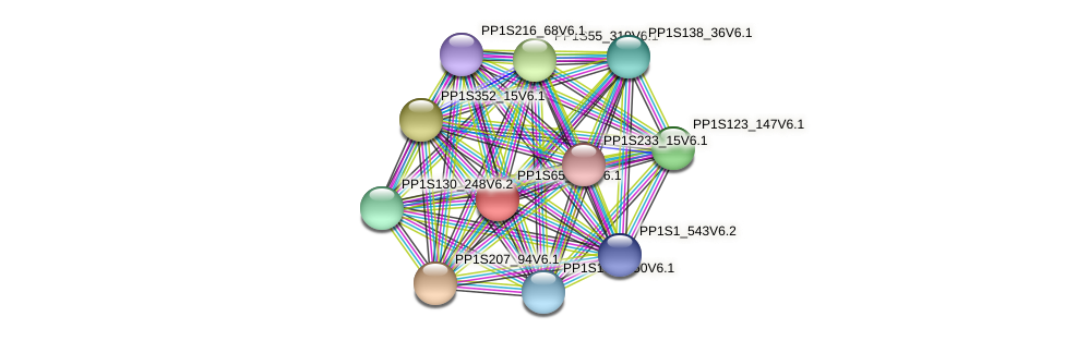 PP1S65_136V6.1 protein (Physcomitrella patens) - STRING interaction network