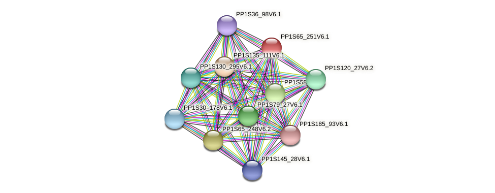 PP1S65_251V6.1 protein (Physcomitrella patens) - STRING interaction network