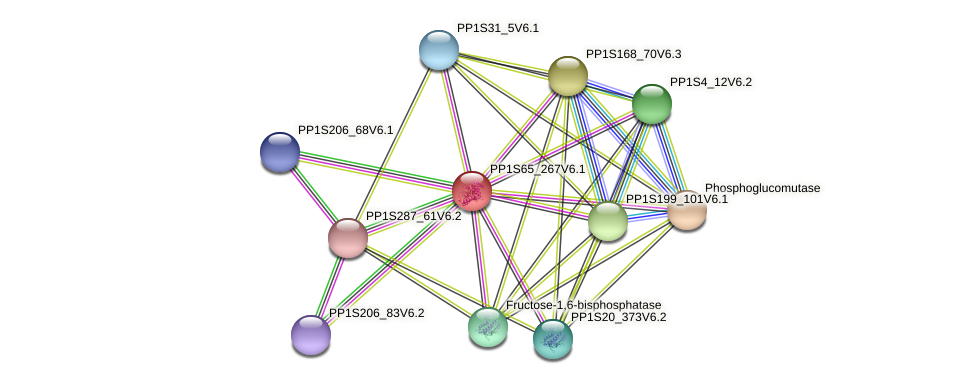 PP1S65_267V6.1 protein (Physcomitrella patens) - STRING interaction network