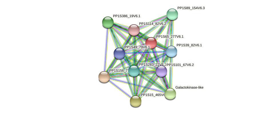 PP1S65_277V6.1 protein (Physcomitrella patens) - STRING interaction network