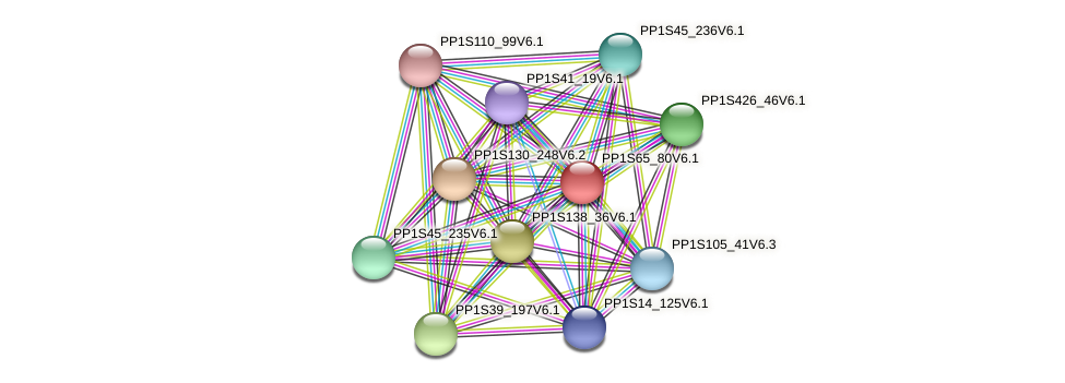 PP1S65_80V6.1 protein (Physcomitrella patens) - STRING interaction network