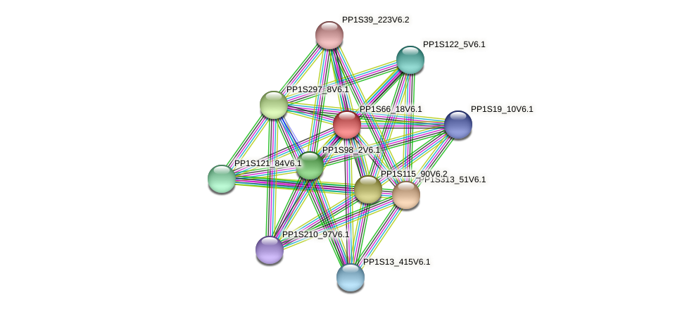 PP1S66_18V6.1 protein (Physcomitrella patens) - STRING interaction network