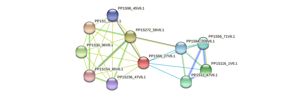 PP1S66_27V6.1 protein (Physcomitrella patens) - STRING interaction network